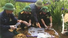 Phát hiện, quy tập hài cốt liệt sĩ kèm di vật có khắc tên tại xã Hướng Linh, huyện Hướng Hóa, tỉnh Quảng Trị
