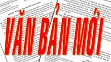 Chính phủ ban hành Nghị định quy định chế độ hỗ trợ và một số chế độ đãi ngộ khác đối với người Việt Nam có công với cách mạng đang định cư ở nước ngoài